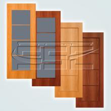 Двери SSC-4-10 изображение 1